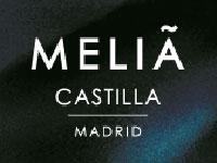 Melia Castilla Madrid