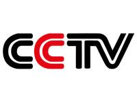 CCTV Network logo image