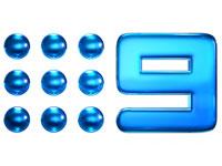 Channel Nine logo image