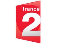France 2 Network logo image